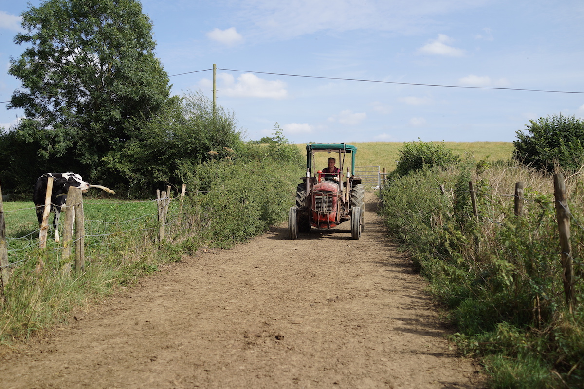 I question the benefits of Red Tractor Assurance - Indie Farmer