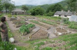 Laya-Point Permaculture